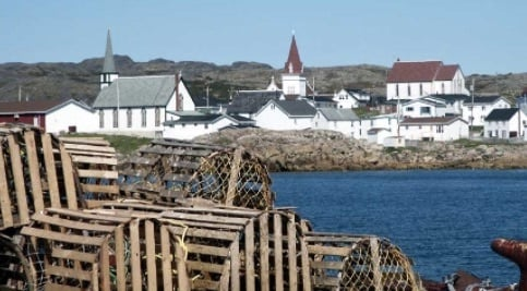 Newfoundland harbor with lobster nets