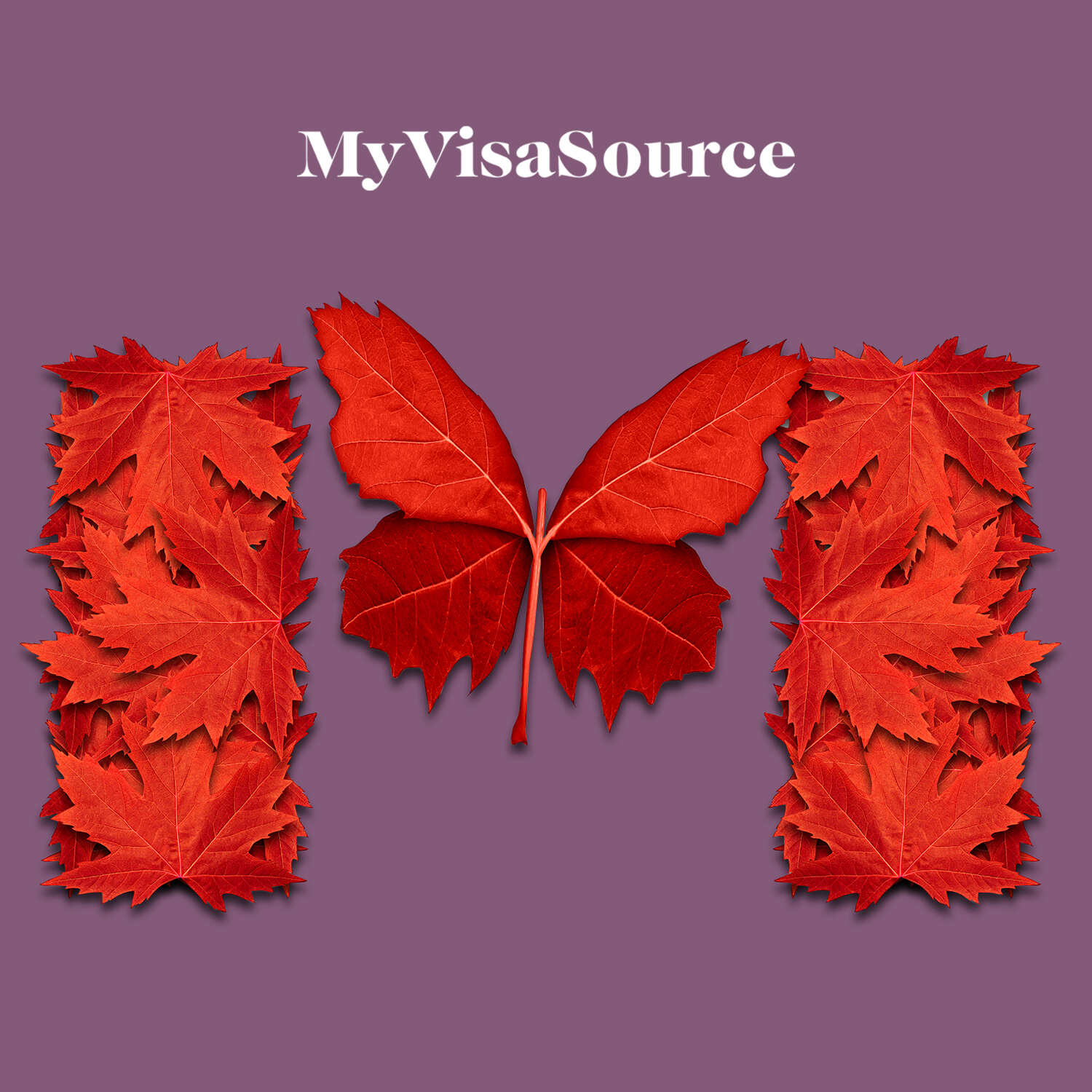 canadian flag made from maple leaves my visa source