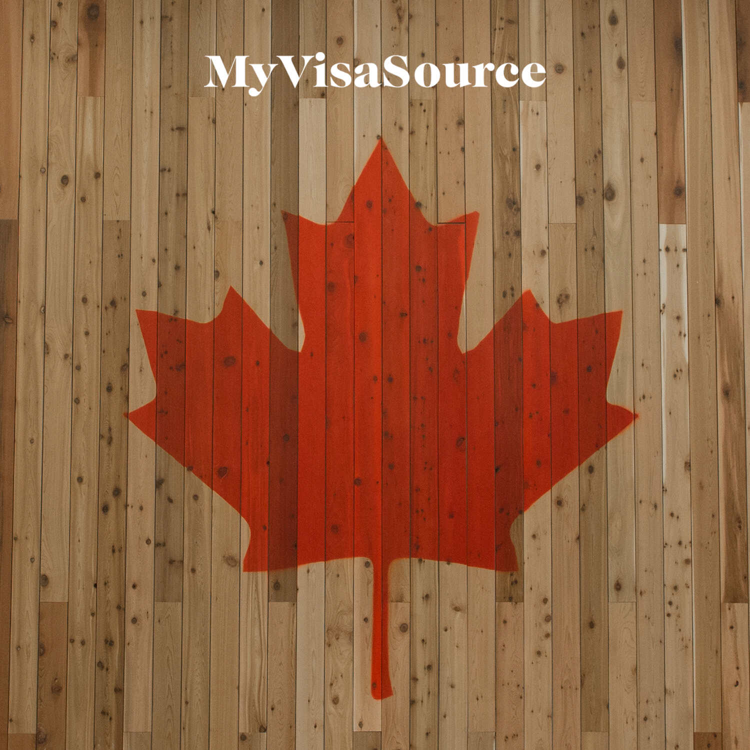 canadian red maple leaf over painted over wood panel my visa source