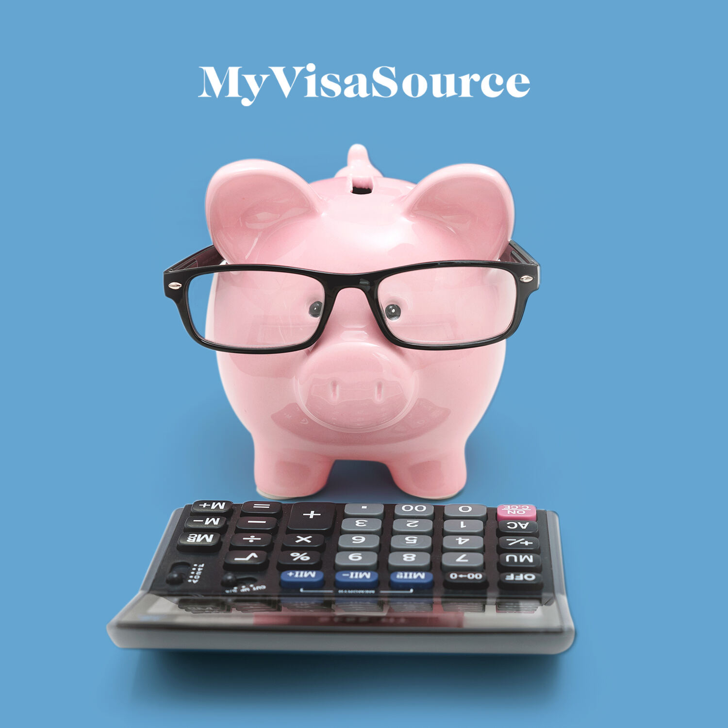 piggybank with glasses on and a calculator in front